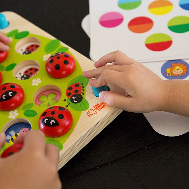 Ladybug's Garden Memory Game Image