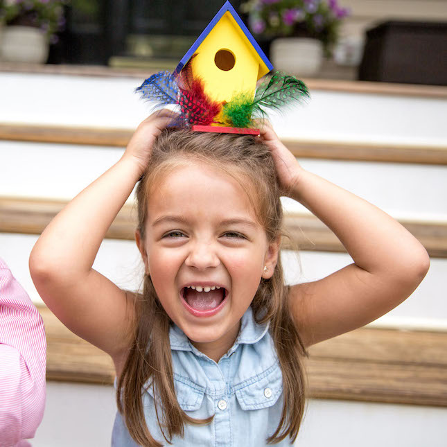 Surprise Ride - Paint a Birdhouse Activity Kit