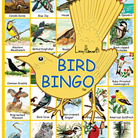 Bingo Game - Birds