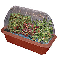 Fly Trap Fiends Windowsill Greenhouse