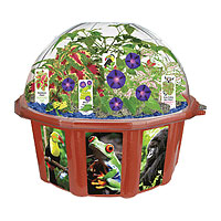 Rainforest Biosphere Dome Terrarium