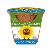 Organic Vegetable Pot - Sunflowers
