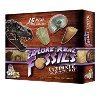 Explore Real Fossils Kit