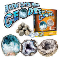 Break Open Real Geodes Starter Science Kit