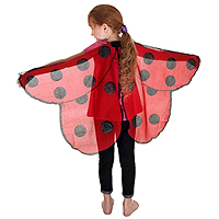 Dreamy Dress-Ups Ladybird Wings
