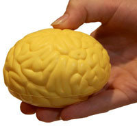 Brain Squish Ball