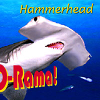 Shark-O-Rama Flip Book