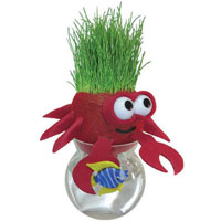 Grow-A-Head Marine Life