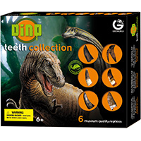 Dinosaur Teeth Collection