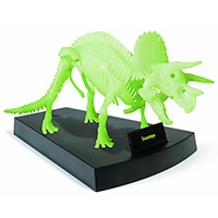 Jurassic Night Dinosaur Skeleton
