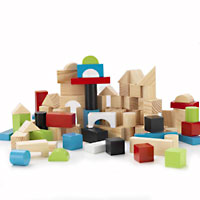 Wooden Block Set - 100 pc