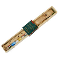 Design Your Own Musical Recorder