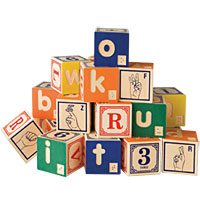 Uncle Goose Blocks - American Sign Language & Braille