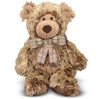 Brownson Bear