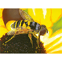 Sunflower Snack - 100 piece Jigsaw Puzzle