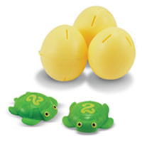 Taffy Turtle Catch & Hatch