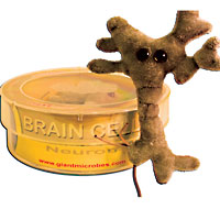 Brain Cell Petri Dish