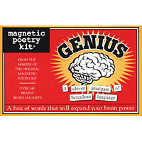 The Genius Magnetic Poetry Kit