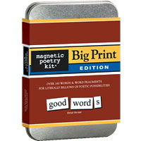 Big Print Magnetic Poetry Kit