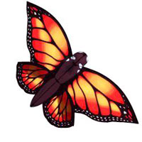 Monarch Butterfly Dye-Sublimation
