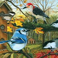 Cobble Hill Puzzles Blue Jay and Friends - 1000 pc