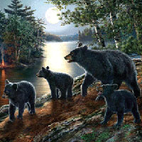 Cobble Hill Puzzles Bear Moon - 1000 pc