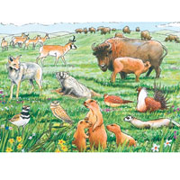 Cobble Hill Habitat Tray Puzzle - Life in the Prairie