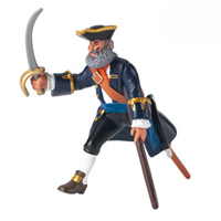 Pirate Captain with Wooden Leg