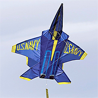 3D Jet - Blue Angel Kite
