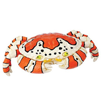 4D Clown Crab Puzzle