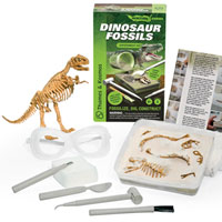 Ignition Series - Dinosaur Fossils