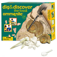 Ammonite Dig & Discovery Excavation Kit