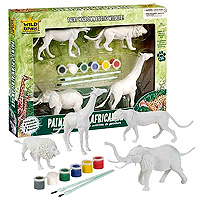 Paint & Play Set - Animal