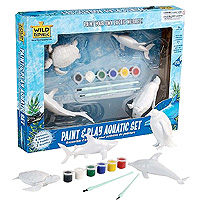 Paint & Play Set - Aquatic