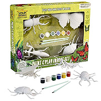 Paint & Play Set - Insect