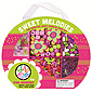 Sweet Melodies Bead Kit - Pink Harmony