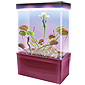 Carnivorous Creatures LED Light Cube