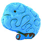 Giant Plush Brain