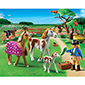 Playmobil Pony Ranch - Paddock with Horses and Foal