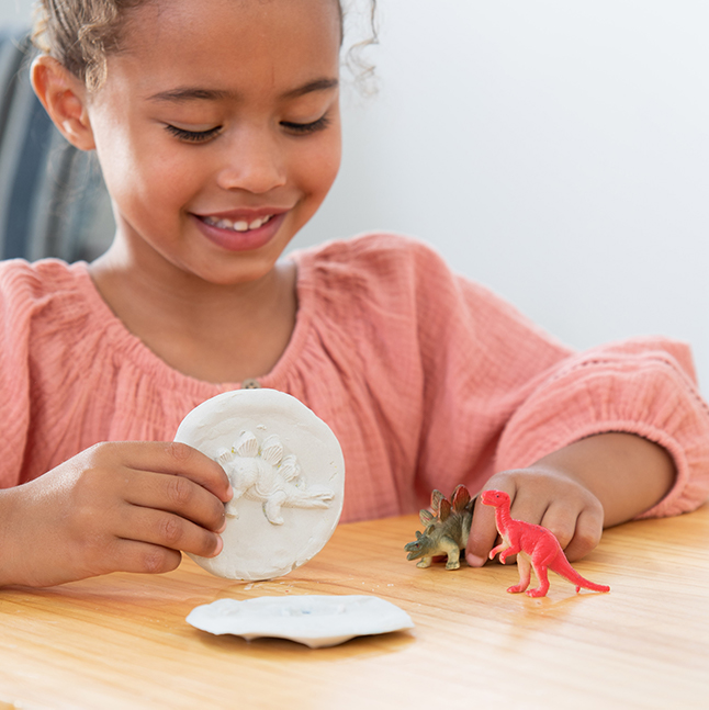 Surprise Ride - Make Dinosaur Fossils Activity Kit