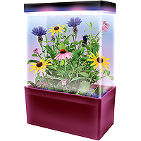 Mini-Meadow LED Light Cube