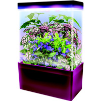 Tropical Jungle LED Light Cube