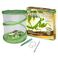 Green Earth Praying Mantis Kit