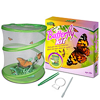 Green Earth Butterfly Kit