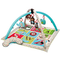 Alphabet Zoo Activity Gym
