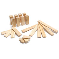 Tegu 22 Piece Endeavor Set