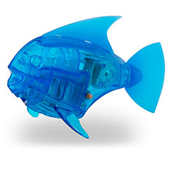 Hexbug buy online at fat brain toys for Hex bug fish